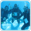 PADI Specialty Instructor