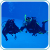 DISCOVER SCUBA (Try Diving)